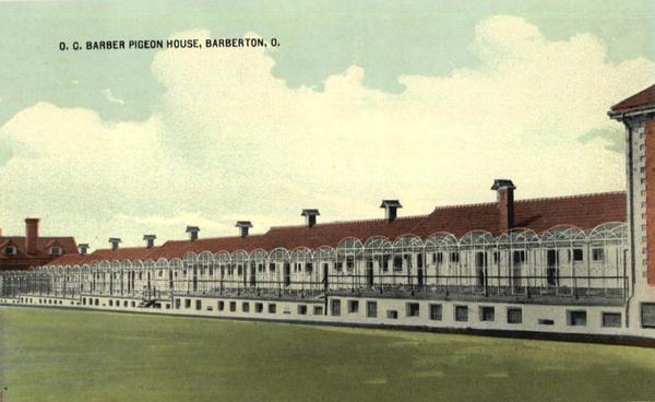 Anna Dean Farm  Squabbery – Pigeon House
