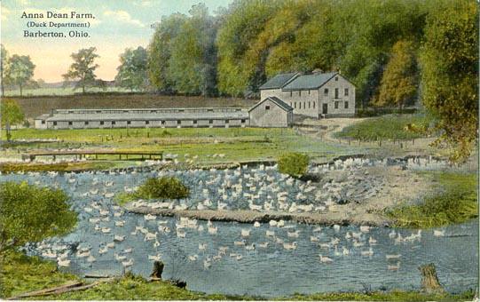 O. C. Barber's Anna Dean Duck Farm
