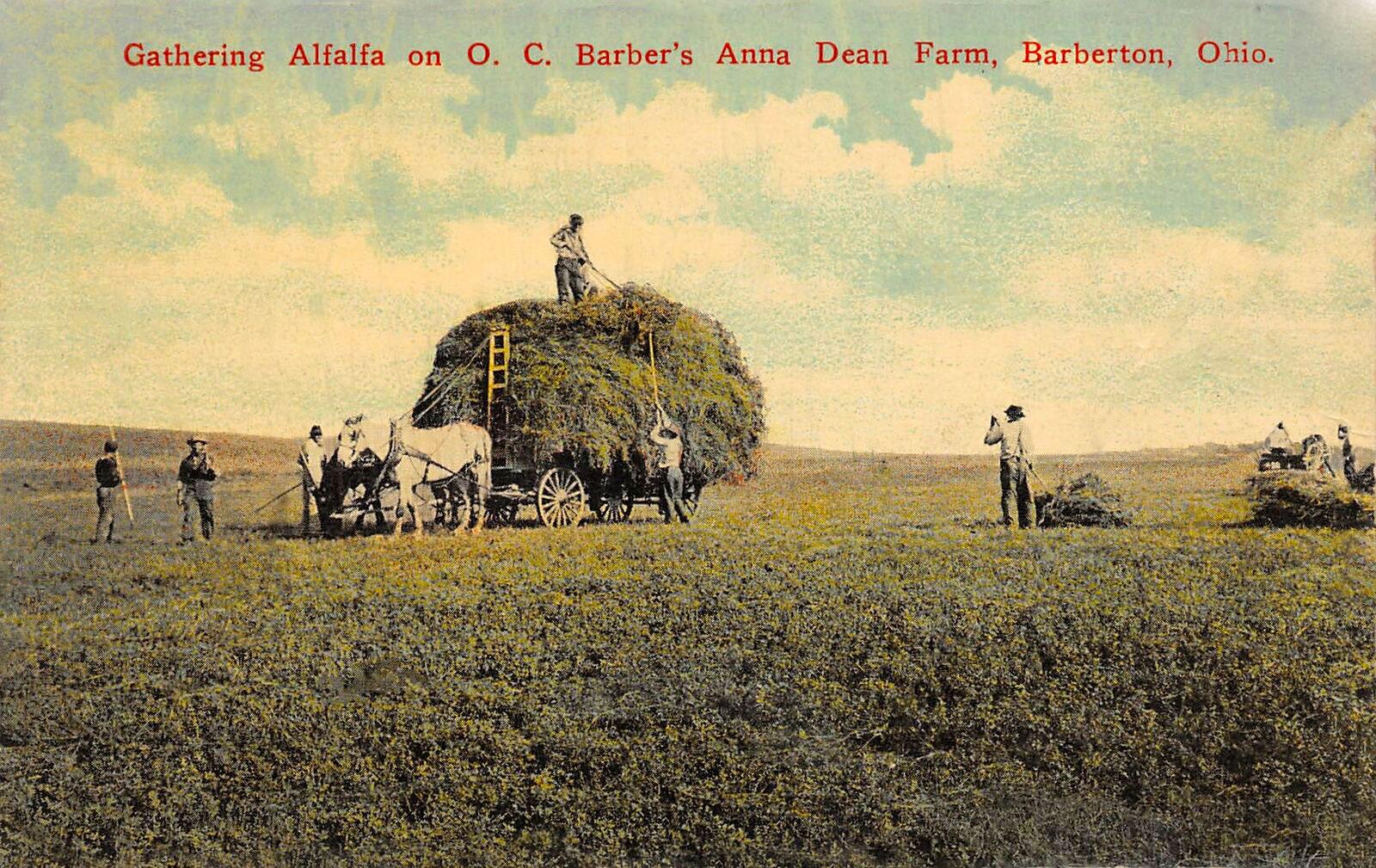 barberton-farm